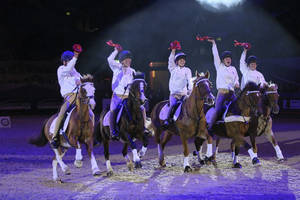 Horse of the year show2