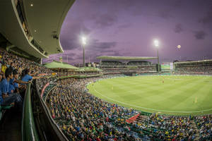 Australia vs. New Zealand Cricket Private Suite Experience1