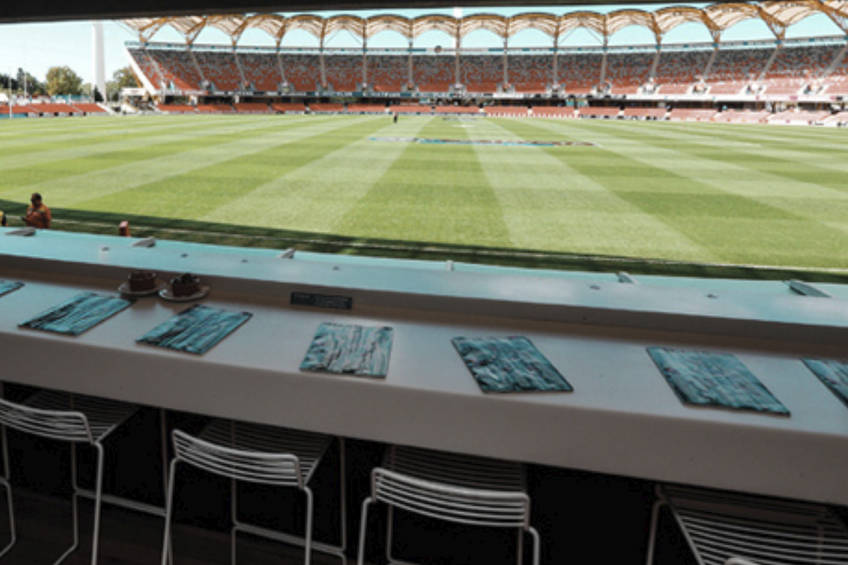 Melbourne stars the dugout experience at metricon stadium1