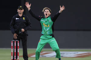 melbourne stars vip suite experience at metricon stadium0
