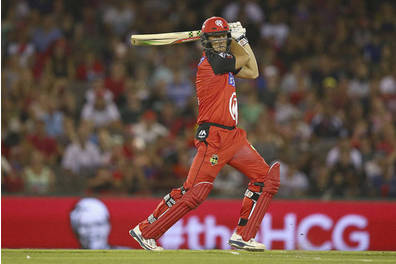 Melbourne Renegades Lounge Experience