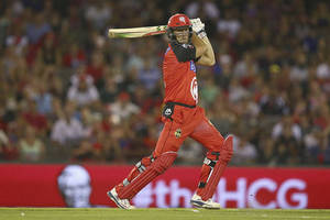 Melbourne Renegades Lounge Experience0