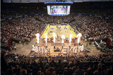 Sydney Kings Royal experience for 20 people