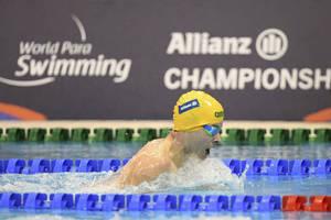 Matt Levy Swimming Experience2