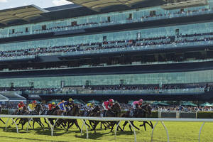 Melbourne Cup Day in Sydney – Royal Randwick Ballroom Experience0